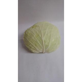 Braunschweigerkraut