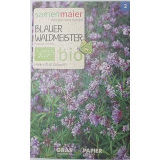 Blauer Waldmeister bio