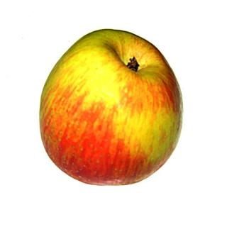 Äpfel Pinova