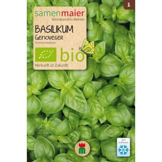 Basilikum Bio Pg 1
